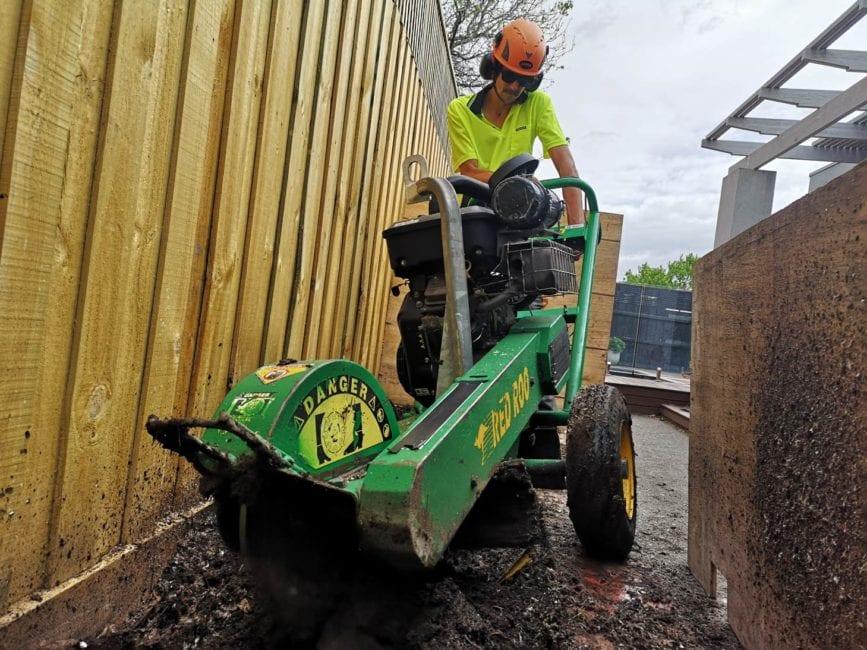 Stump grinding in Malvern East