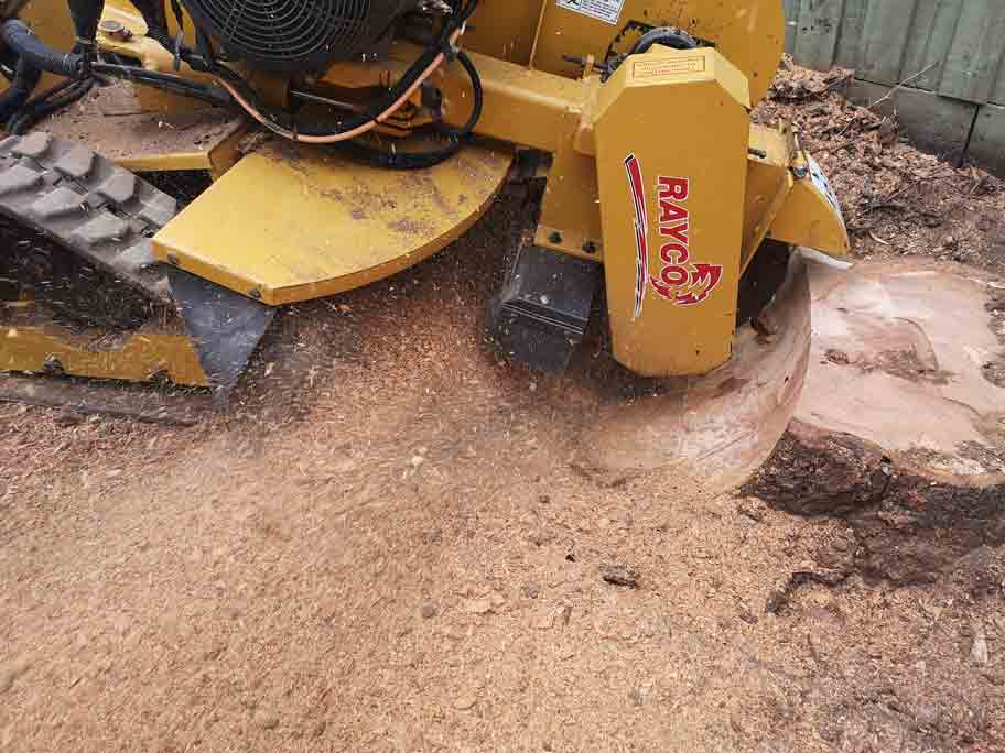 Stump grinder depth in Pascoe Vale