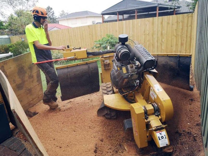 operator using a stump grinder in coburg