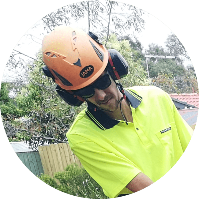 Area manager keilor