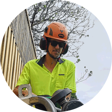 our stump removal manager for footscray
