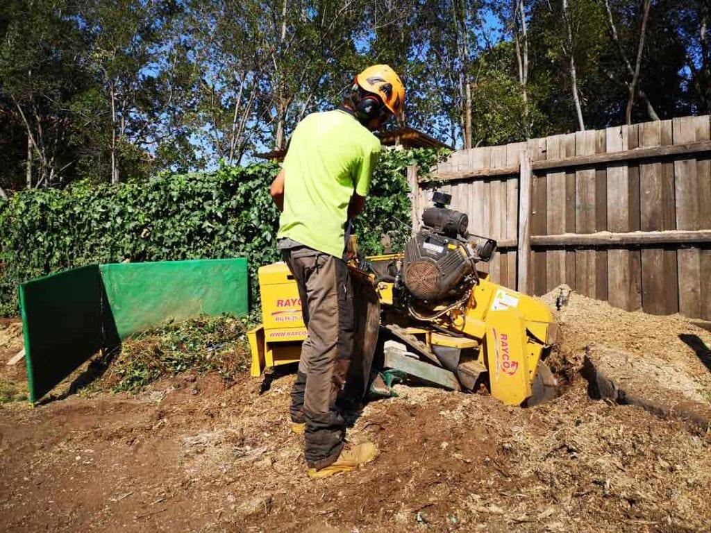 large stump grinder in flower bed